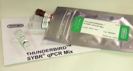 高效率SYBR qPCR Mix