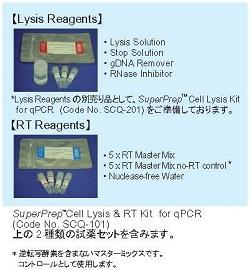 细胞直接逆转录试剂盒
